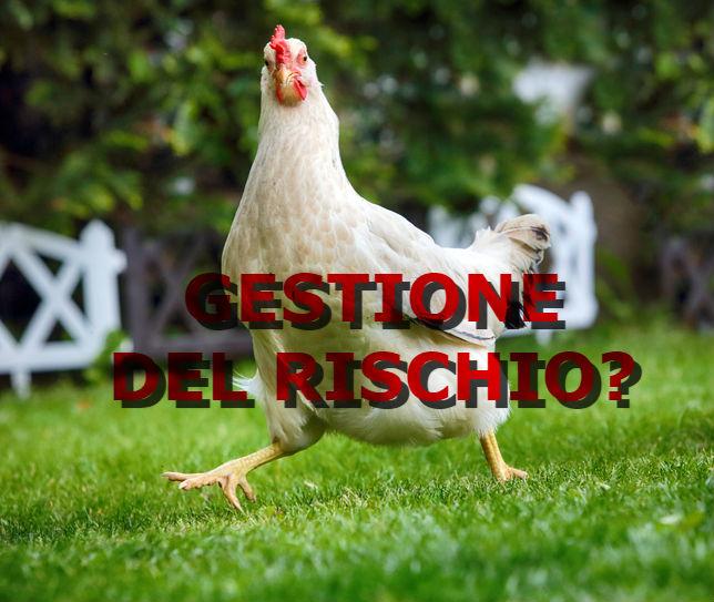 gestione-rischio-pollo